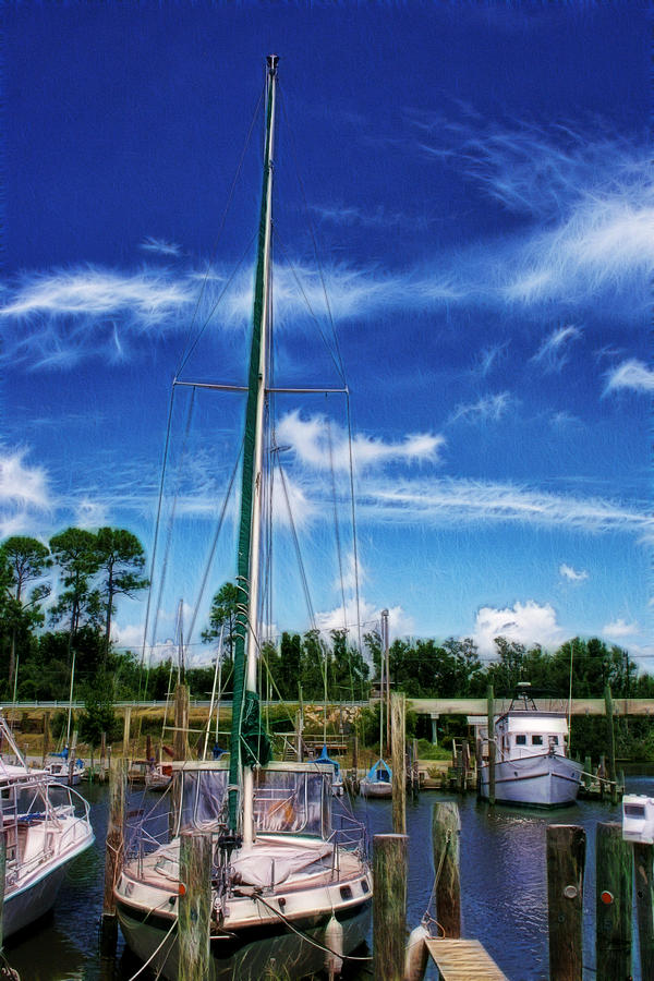 Blue Sky Photograph - Blue Sky by Barry Jones