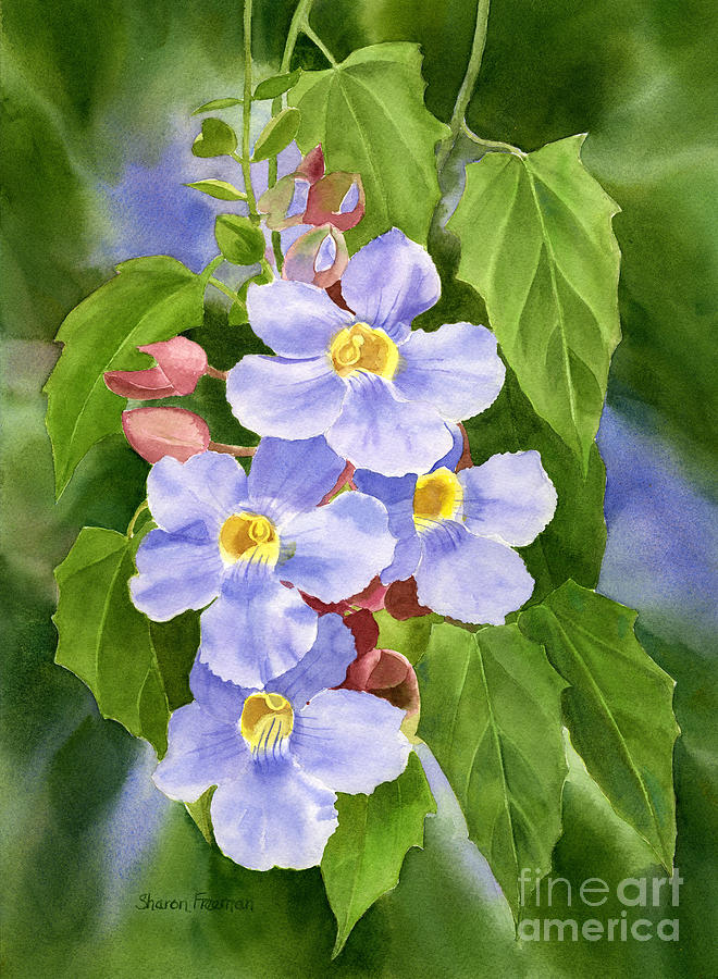 Blue Painting - Blue Sky Vine With Background by Sharon Freeman