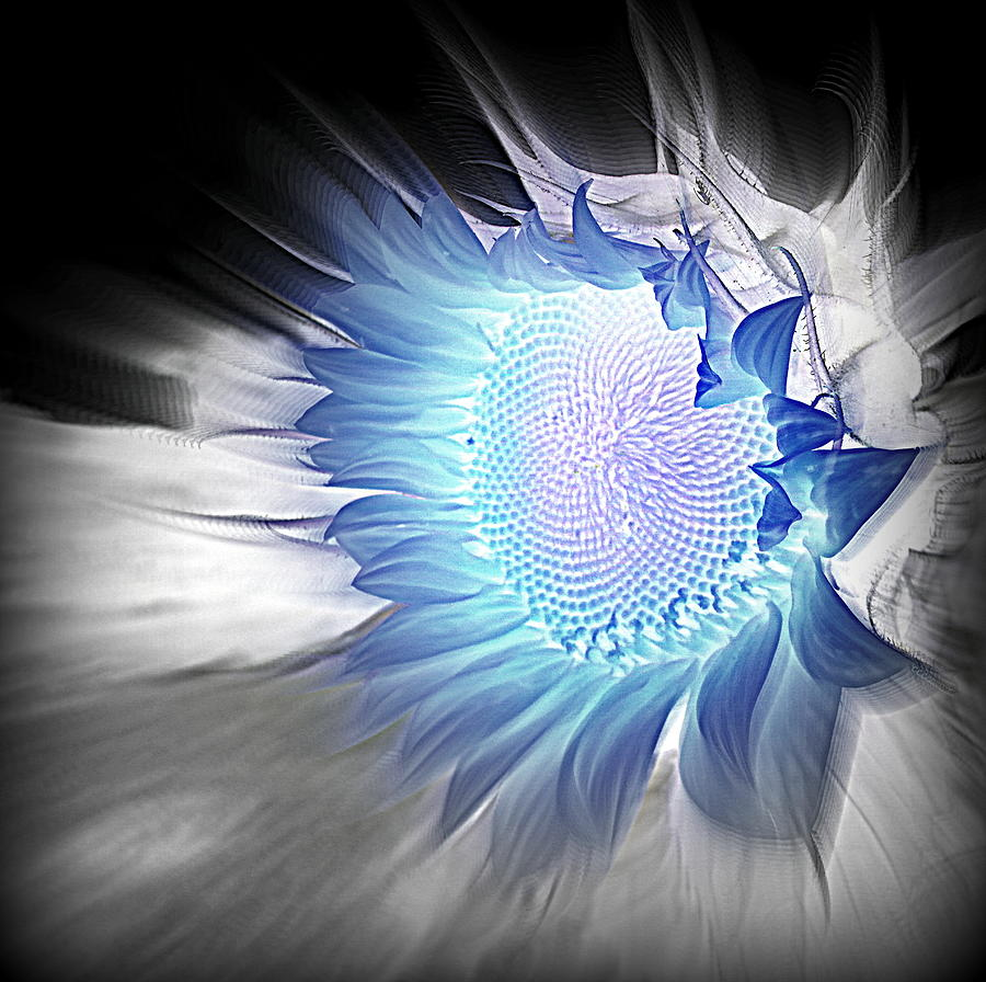 Blue Topaz by Sian Lindemann