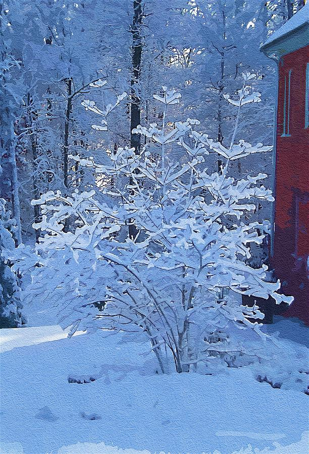Snow Digital Art - Blue Tree by Mitchell Gibson