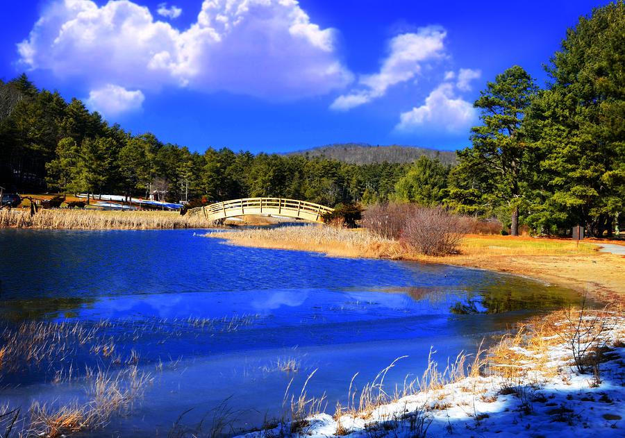 Lisa Lambert Photograph - Blue Water by Lj Lambert
