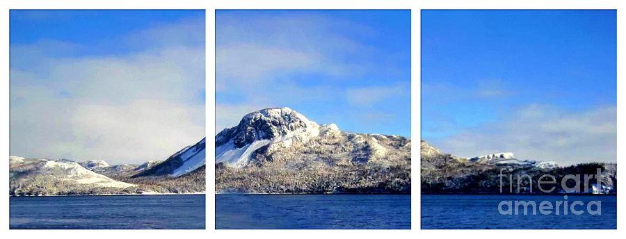 Blue Winter Photograph - Blue Winter Triptych by Barbara Griffin