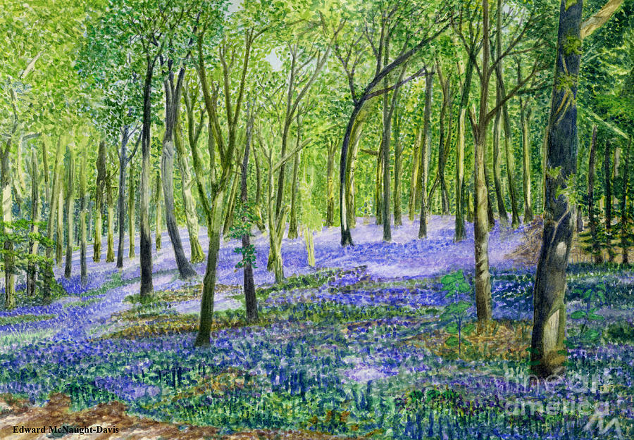 English Bluebell Flower Fairy Picture by Edward McNaught-Davis
