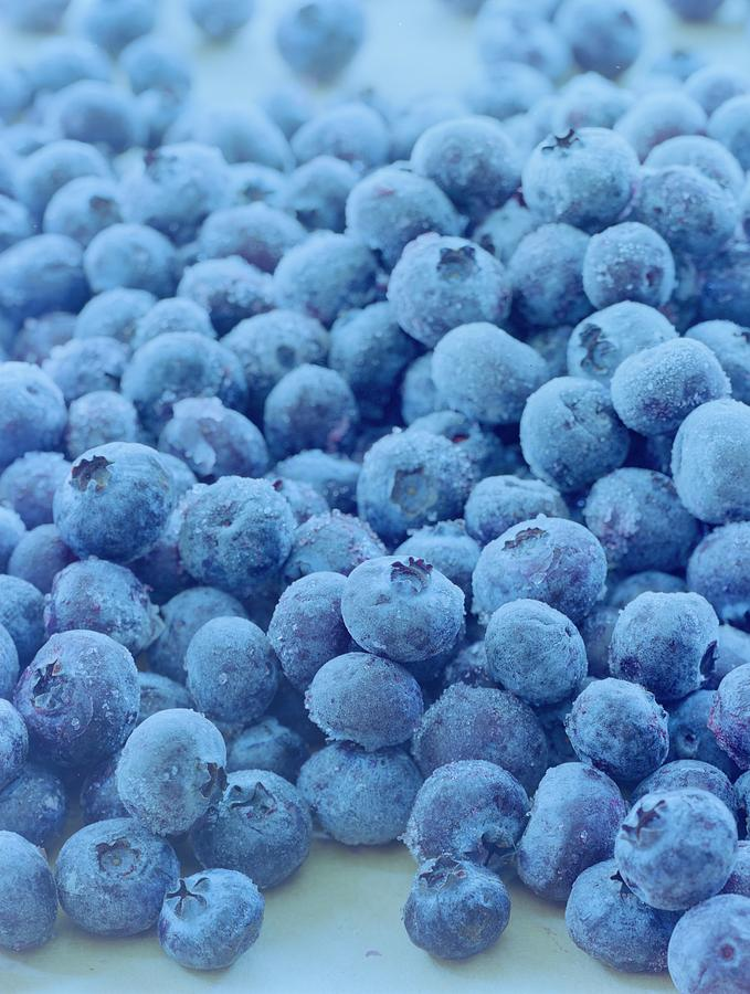 Blueberries Photograph by Romulo Yanes