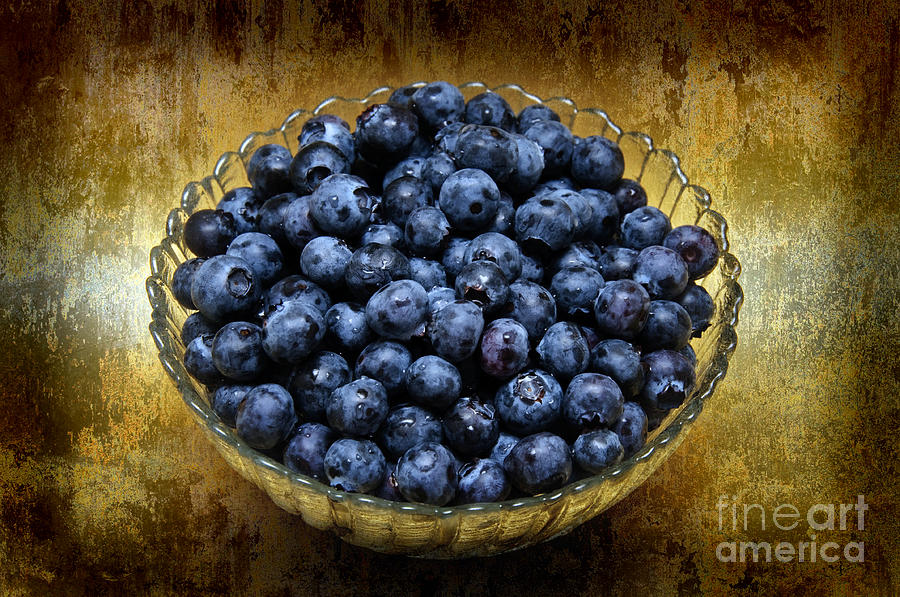 Blueberries Photograph - Blueberry Elegance by Andee Design