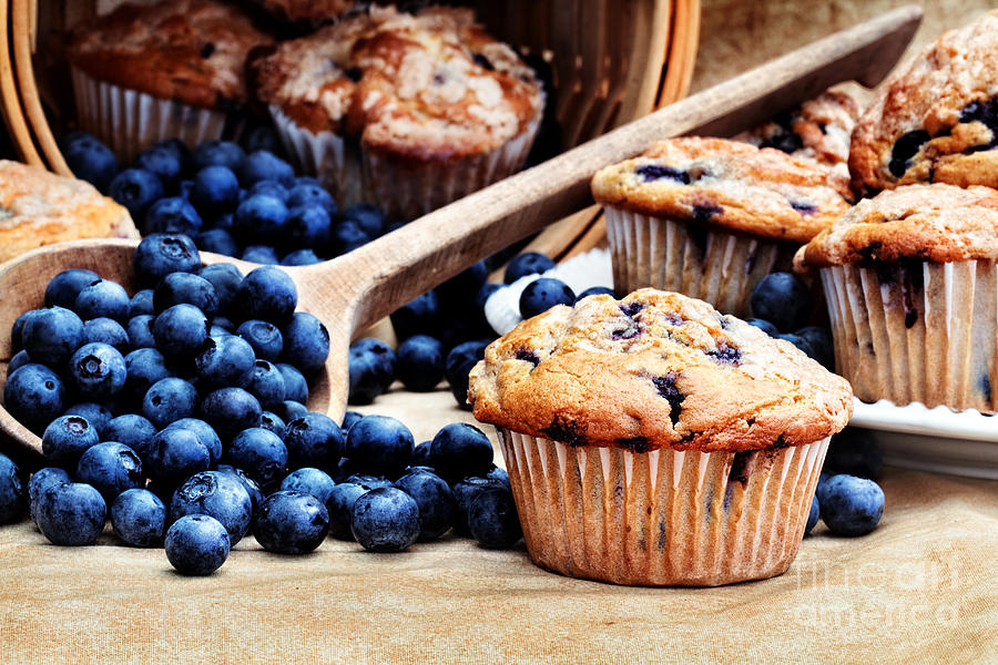 Blueberry Muffin Photograph - Blueberry Muffins by Stephanie Frey