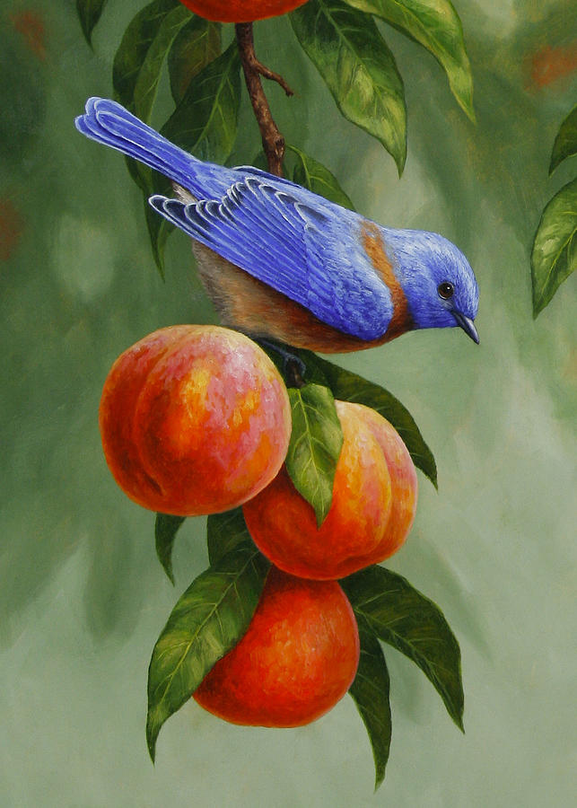Bluebird and peaches greeting card 1 painting by crista forest bird painting bluebird and peaches greeting card 1 by crista forest m4hsunfo
