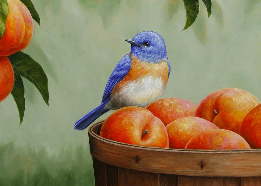 Bluebird and peaches greeting card 3 painting by crista forest bird painting bluebird and peaches greeting card 3 by crista forest m4hsunfo Image collections