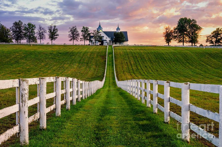 Kentucky Photograph - Bluegrass Farm by Anthony Heflin
