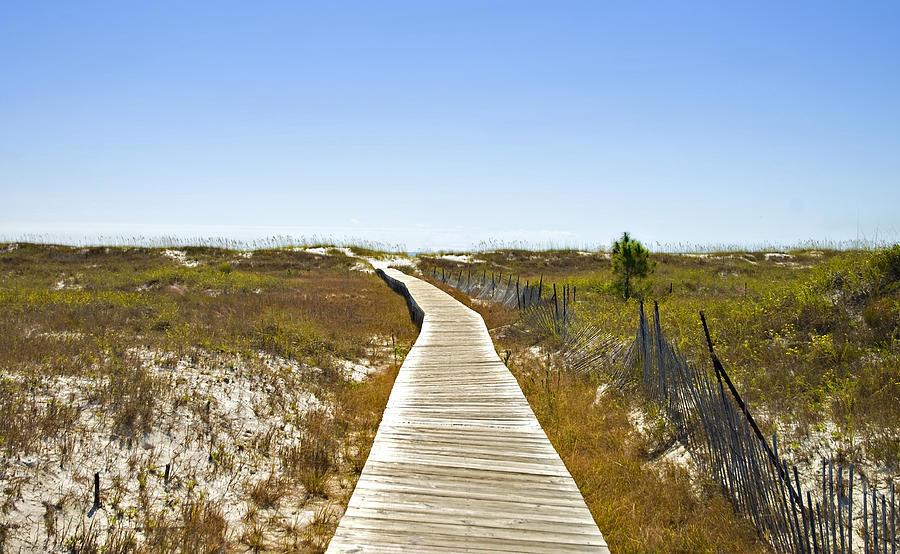Wooden Photograph - Boardwalk by Susan Leggett