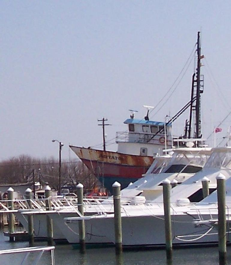 Boat Photograph - Boats Docked by Pharris Art