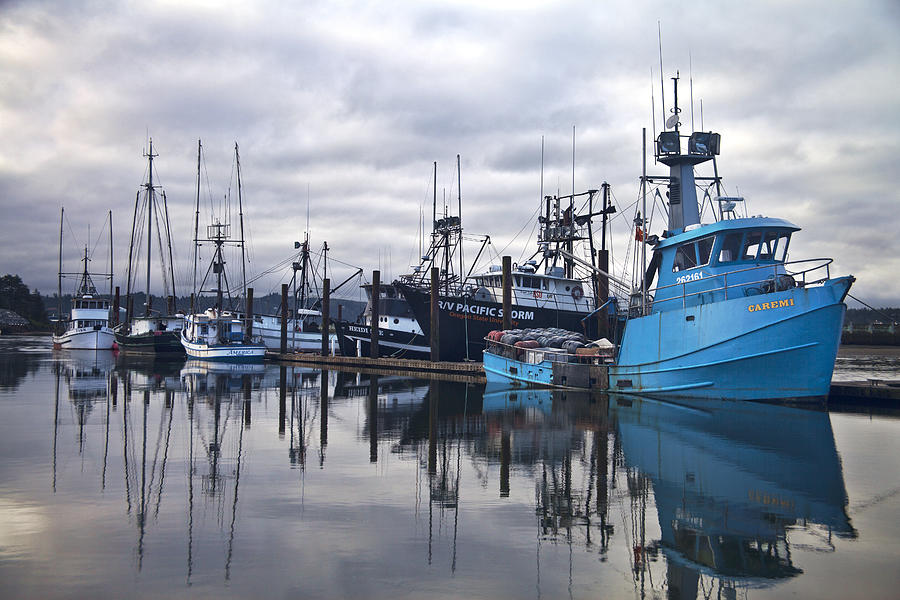 Newport Photograph - Boats in Harbor Newport Oregon by Carol Leigh