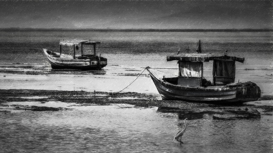 Boats Photograph - Boats Of Trinidad by Ted Petrovits III