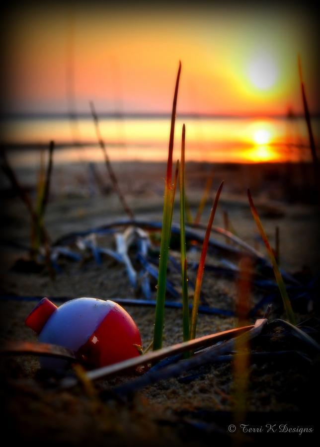 Beach Photograph - Bobber by Terri K Designs