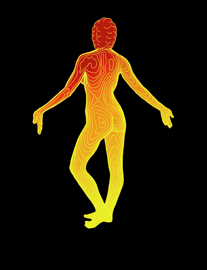 Woman Photograph - Body Contour Map Of Woman In Posterior View by Dr Robin Williams/science Photo Library