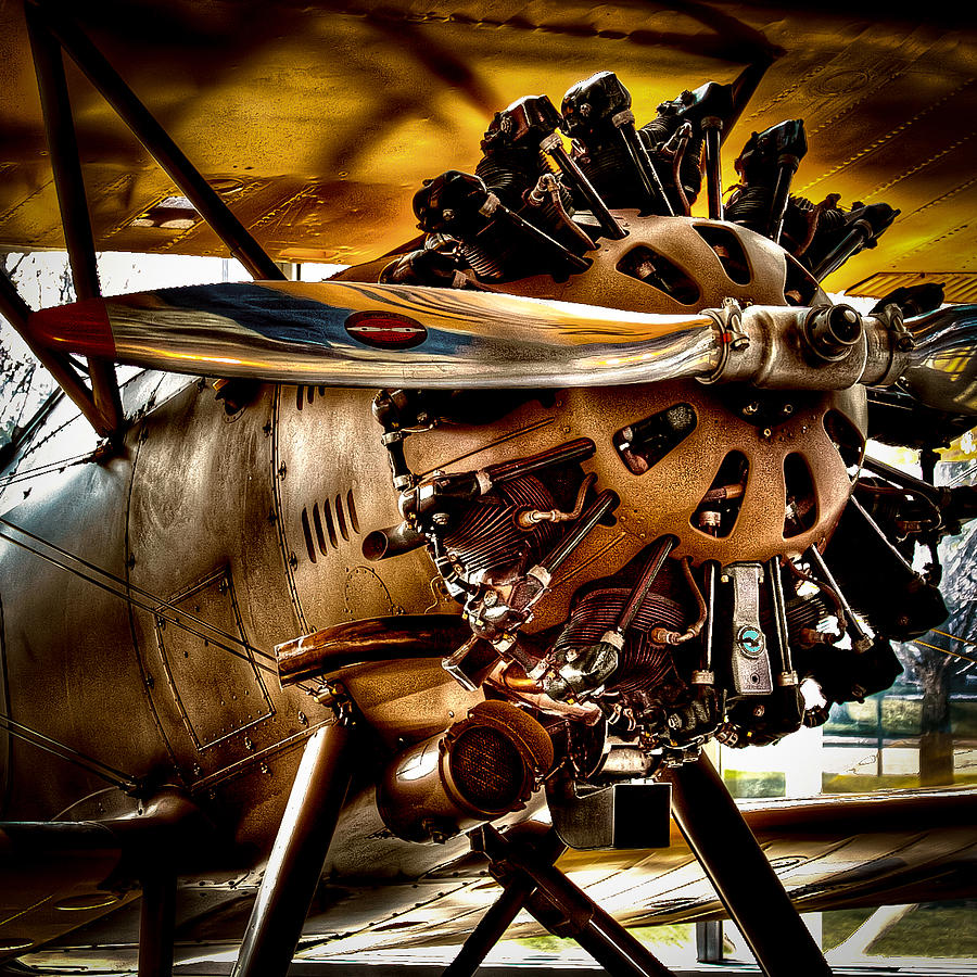 Boeing Photograph - Boeing Model 100 by David Patterson