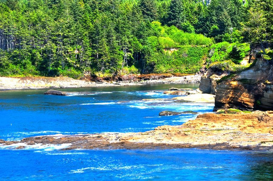 Boiler Bay 17160 Photograph
