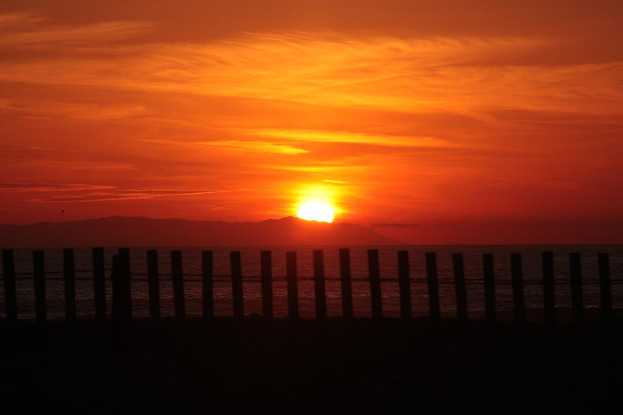 Bolsa Chica Sunset by Joanne Coyle