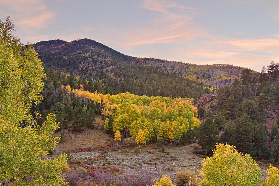 Autumn Photograph - Bonanza Autumn View by James BO  Insogna