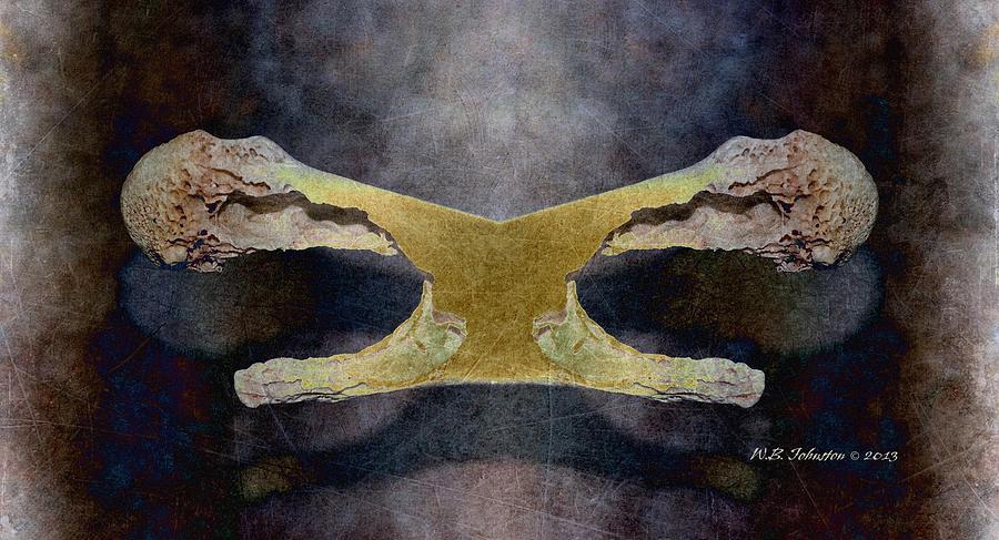Bone Photograph - Bone Dance by WB Johnston