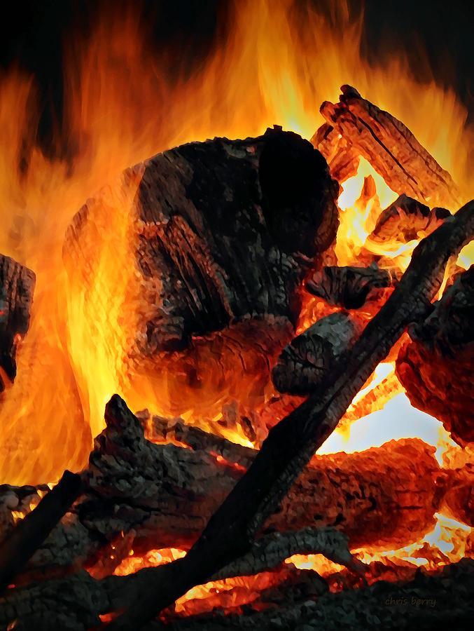 Bonfire Photograph - Bonfire  by Chris Berry