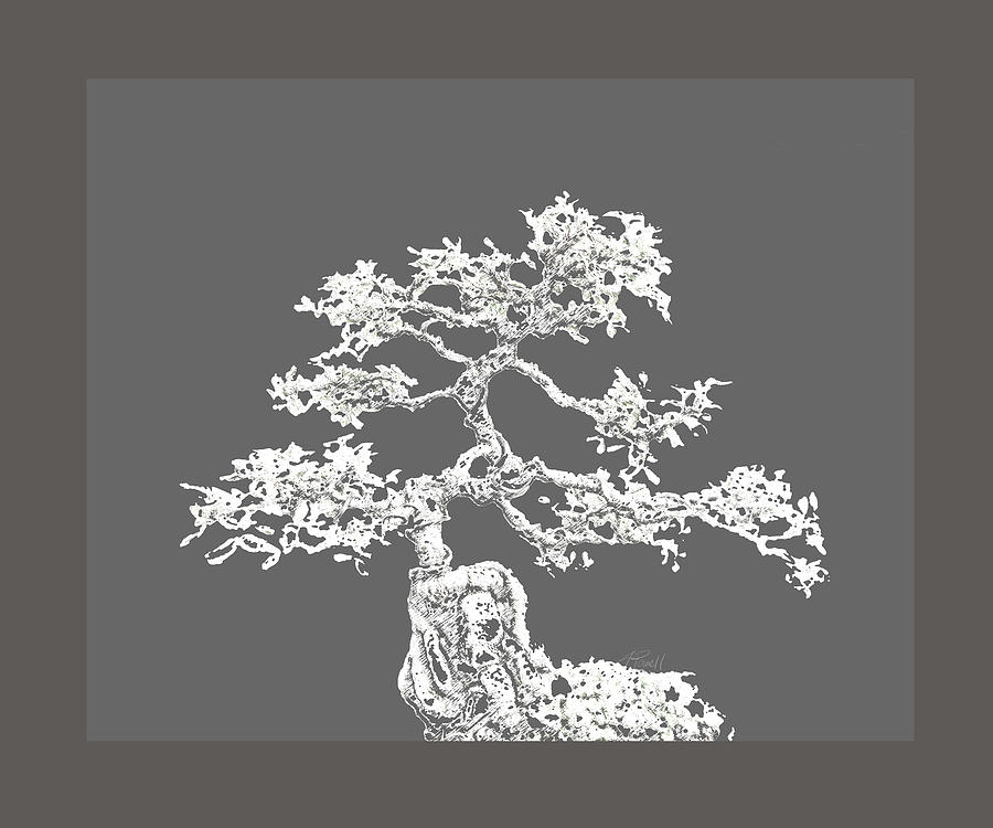 Bonsai Digital Art - Bonsai II by Ann Powell