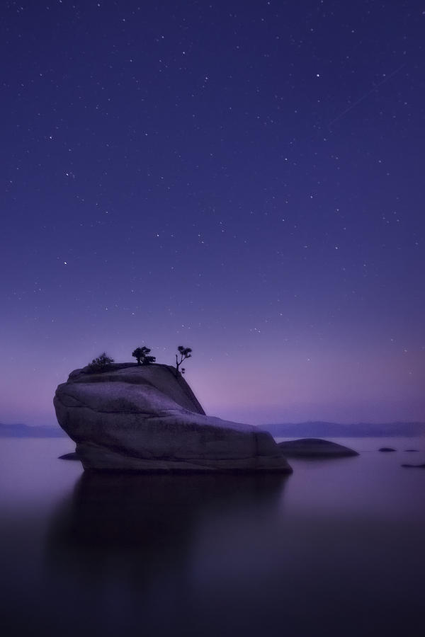 Bonsai Island Photograph