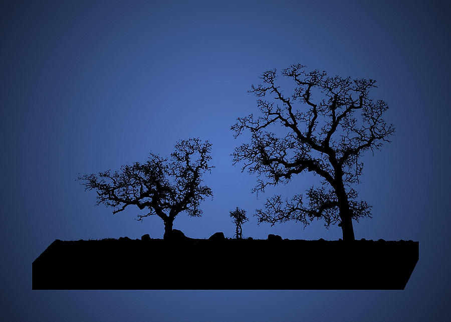 Bonsai Tree Family In Blue Photograph By Robert Woodward
