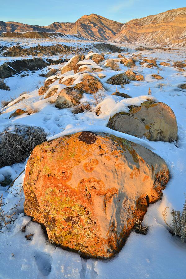 Book Cliffs 248 Photograph