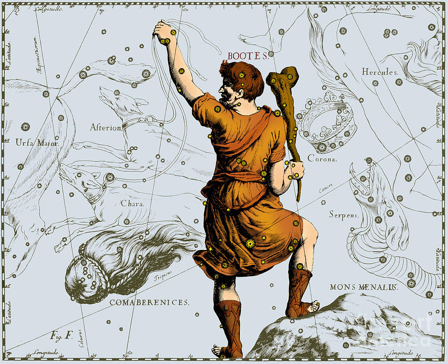 Science Photograph - Bootes Constellation, 1687 by Science Source
