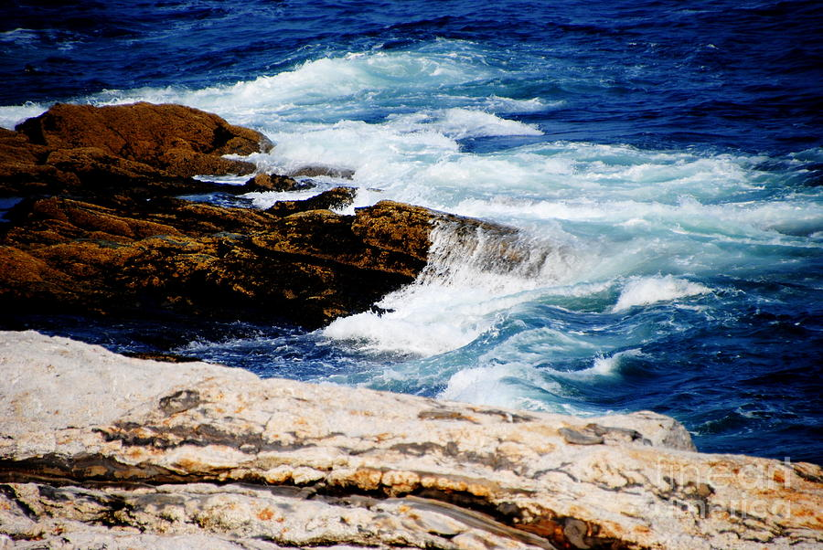 Water Photograph - Boothbay Harbor Maine by Jacqueline M Lewis