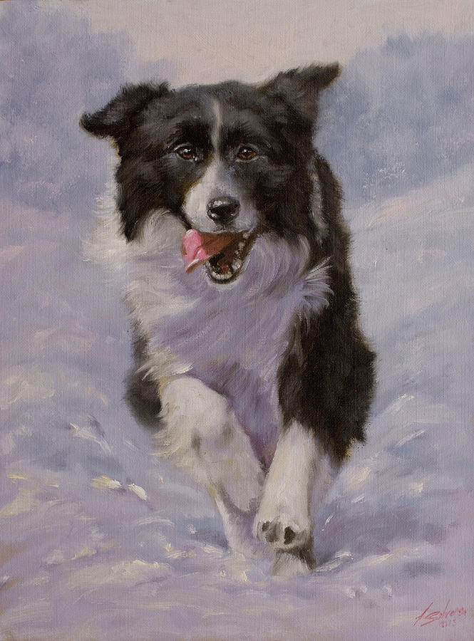 Border Collie Painting - Border Collie Portrait II by John Silver
