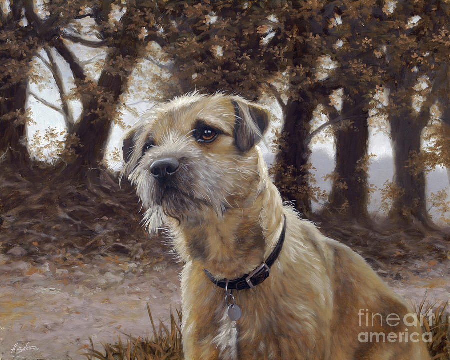 Weimaraner Painting - Border Terrier In The Woods by John Silver
