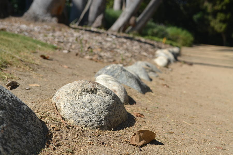 Rocks Photograph - Bordered Pathway by Kiros Berhane