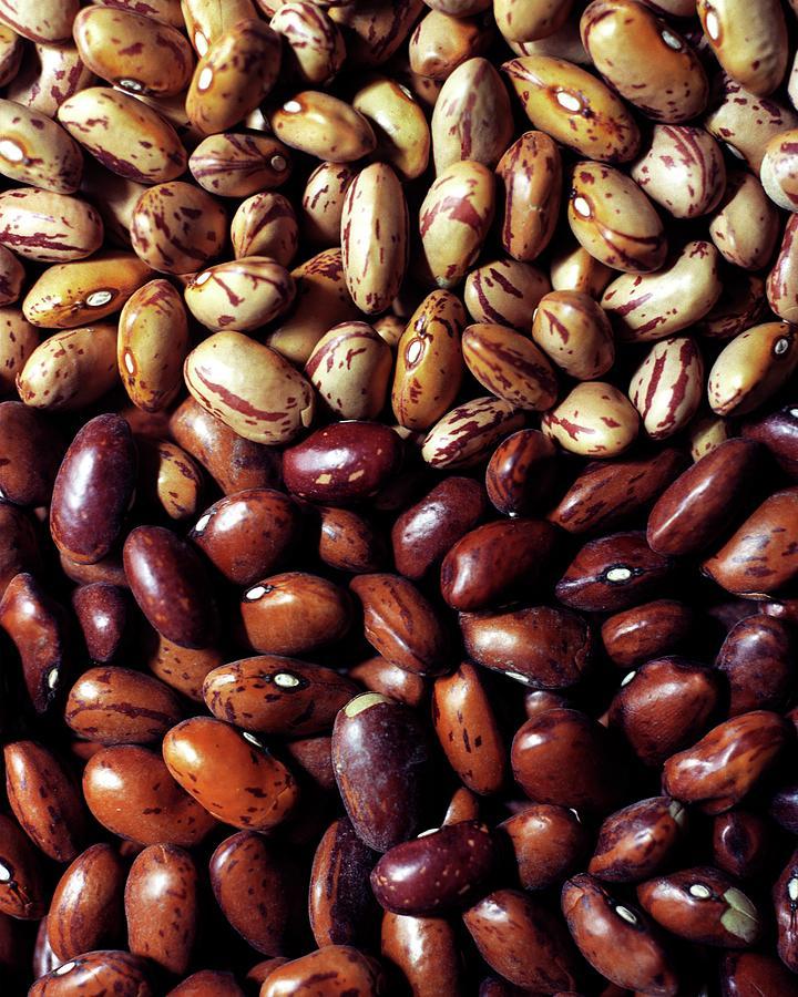 Borlotti Beans Photograph by Romulo Yanes