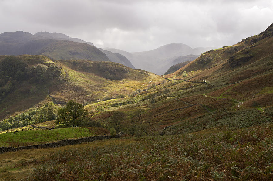 Borrowdale Photograph - Borrowdale Towards Great Gable by Pete Hemington