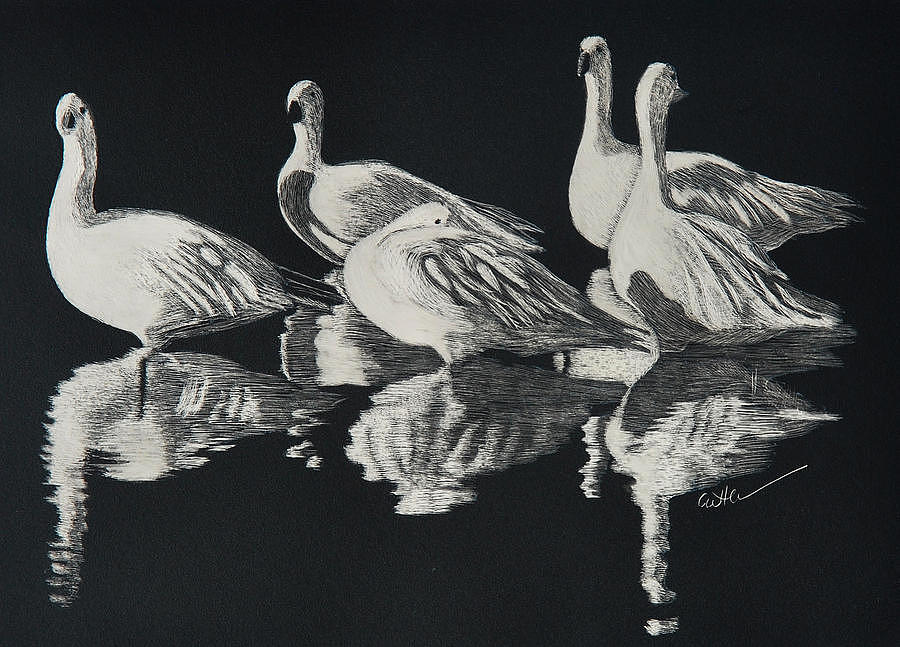 Scratchboard Painting - Bosque Reflections by Diane Cutter