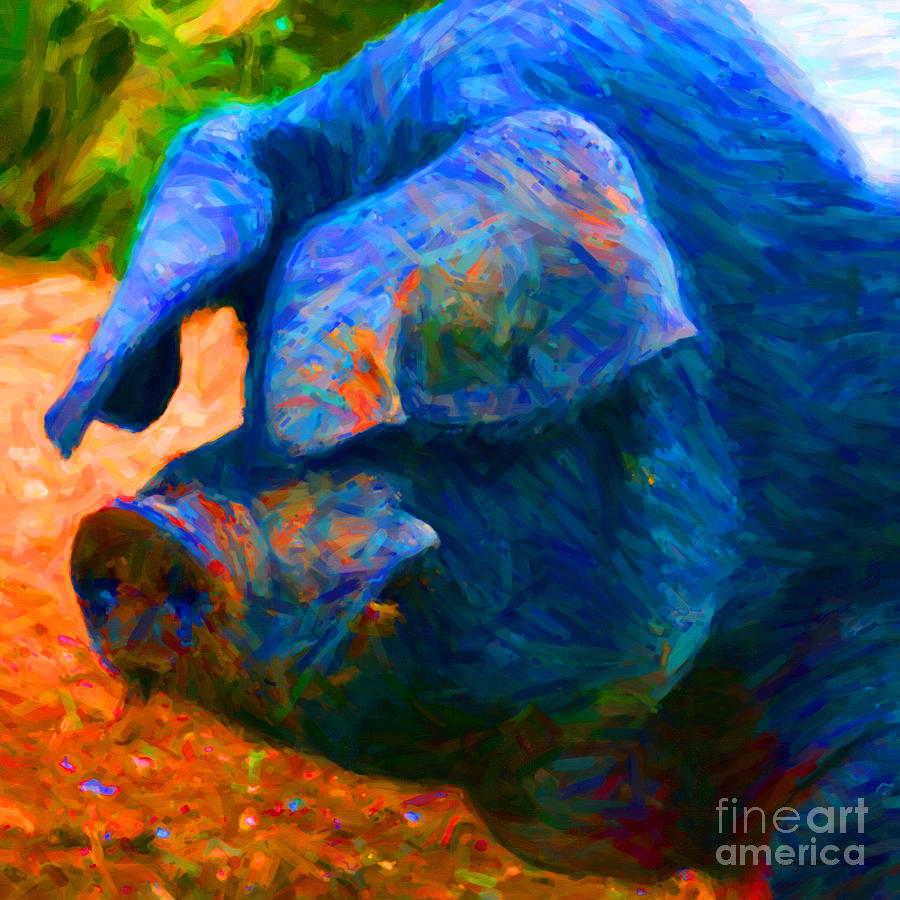 Animal Photograph - Boss Hog - 2013-0108 - Square by Wingsdomain Art and Photography