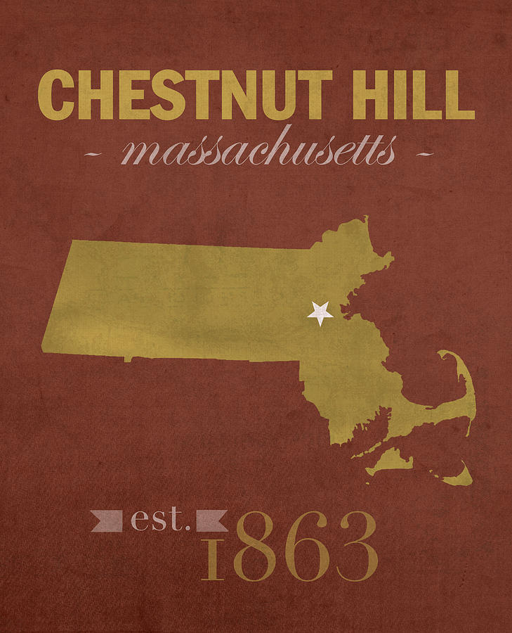 Boston College Mixed Media - Boston College Eagles Chestnut Hill Massachusetts College Town State Map Poster Series No 020 by Design Turnpike
