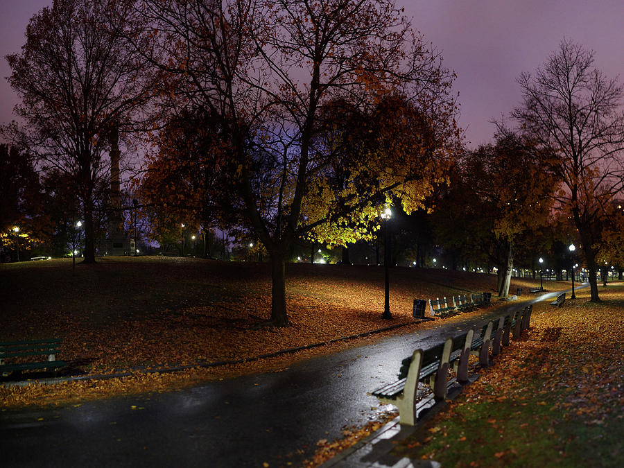 Boston Common Park Photograph by By Yuri Kriventsov