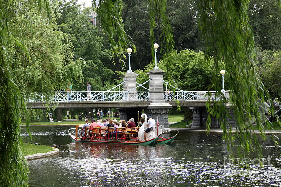 Boston Common Photograph - Boston Swan Boat by Christiane Schulze Art And Photography