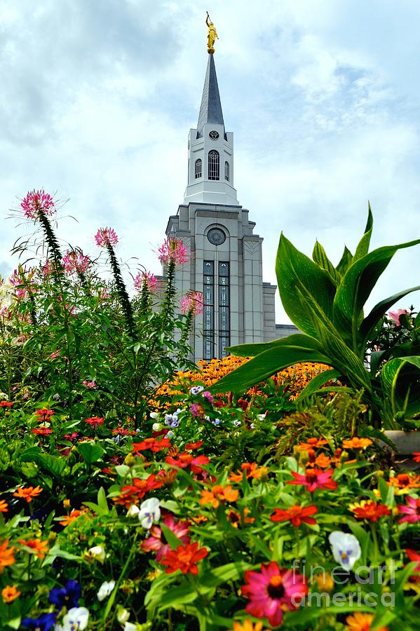Boston Temple Photograph - Boston Temple by Jenny Wood