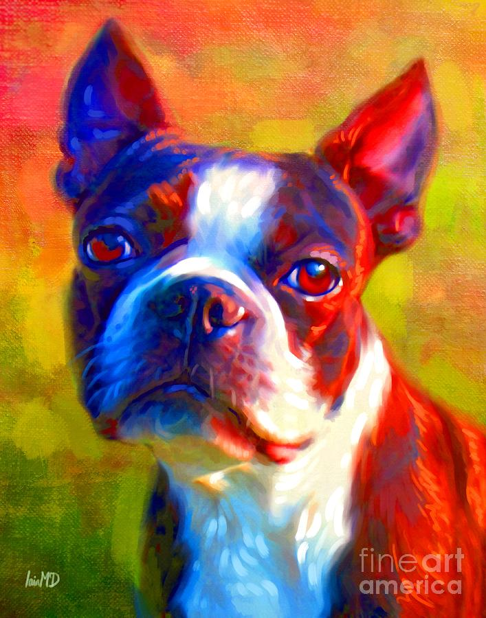 Dog Painting - Boston Terrier Portrait by Iain McDonald