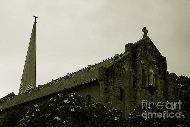 Sepia Digital Art - Botanical Gardens Cathedral by Cheryl Boutwell