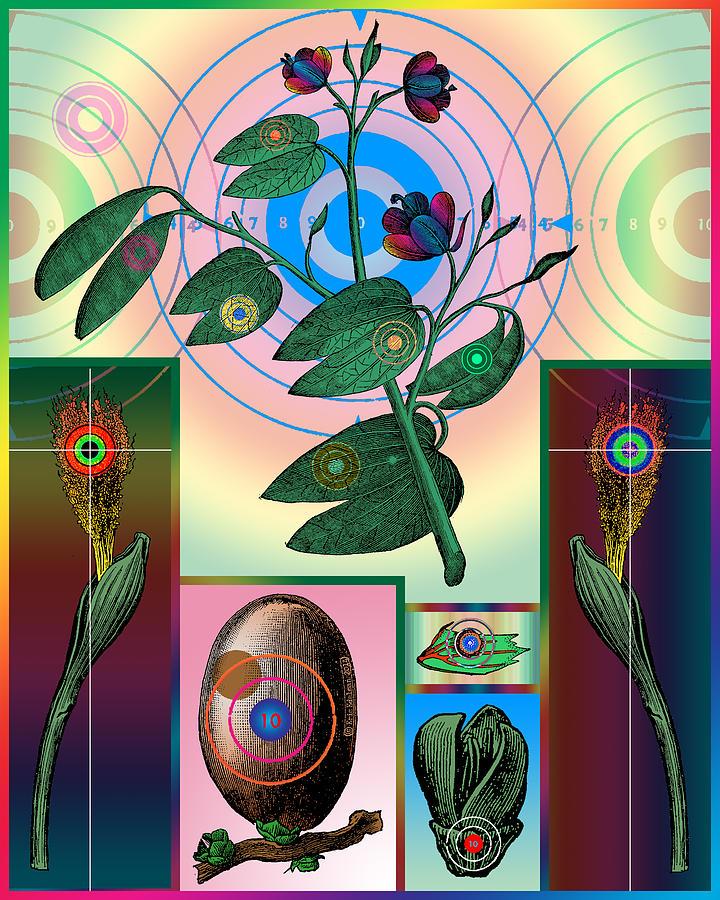 Botanical Targets Digital Art