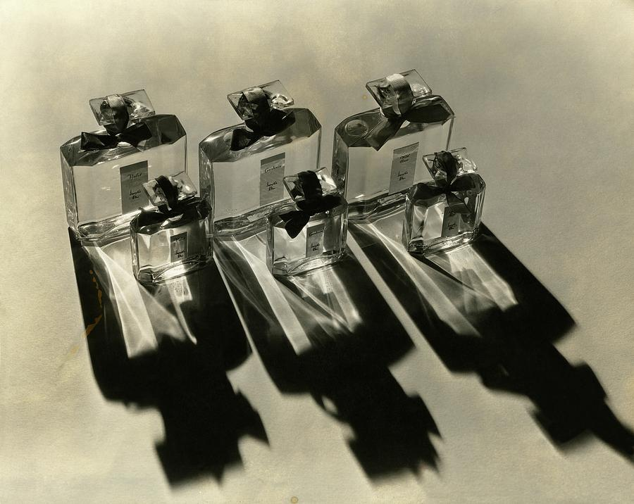 Bottles Of Lucretia Allen Perfume Photograph by Lusha Nelson