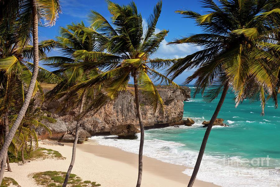 Bottom Bay Beach Barbados Photograph Brian Jannsen