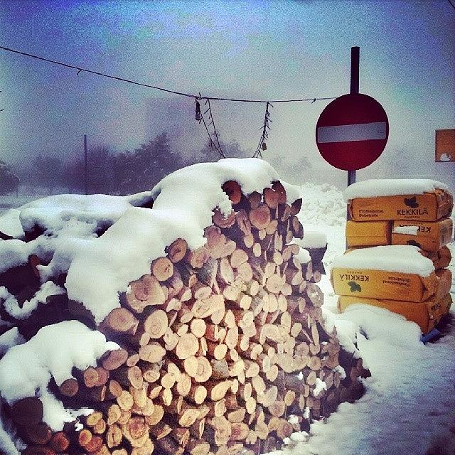 Winter Photograph - Bought Some Woods For The Fire! by Abdelrahman Alawwad