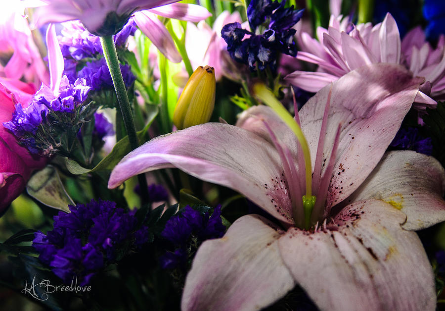 Flowers Photograph - Bouqet by Lori Breedlove