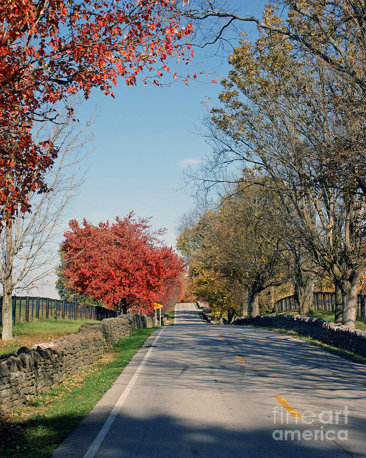 Borurbon County Photograph - Bourbon County Fall by Roger Potts